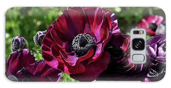 Deep Ranunculus Galaxy Case