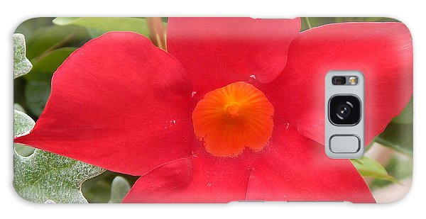 Mandevilla Deep Red Flower Galaxy Case