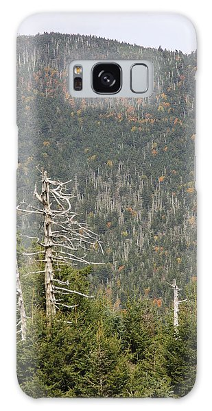 Deeper Into Forest Galaxy Case