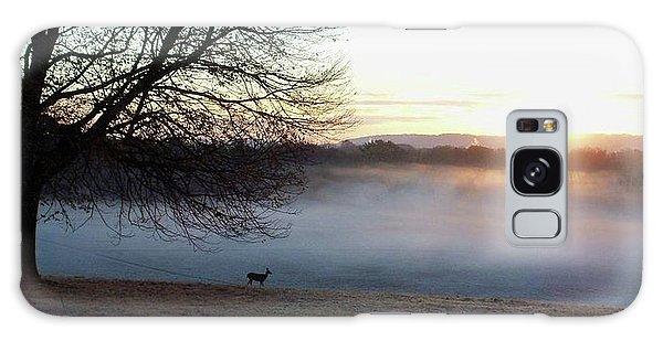 Deer At Dawn Galaxy Case