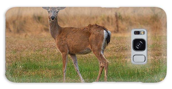 Deer At Sunset Galaxy Case