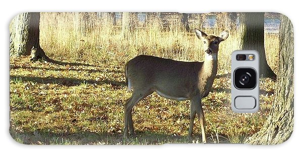 Deer At Valley Forge Galaxy Case