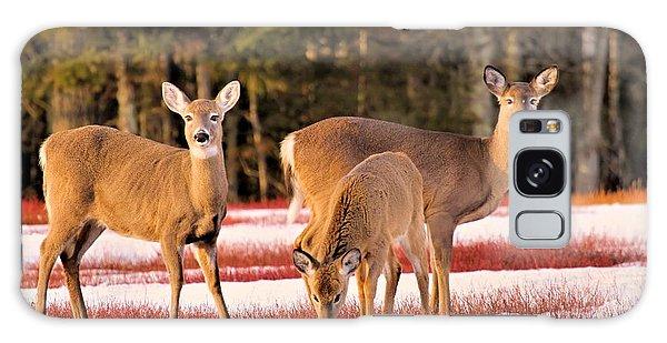 Deer In Snow Galaxy Case