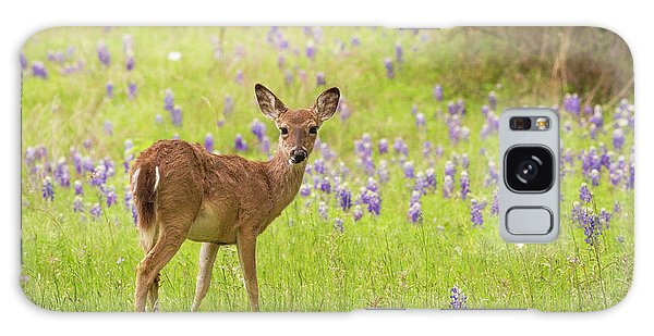 Deer In The Bluebonnets Galaxy Case