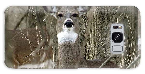Deer In The Forest Galaxy Case