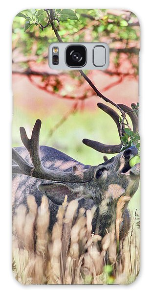 Deer In The Orchard Galaxy Case