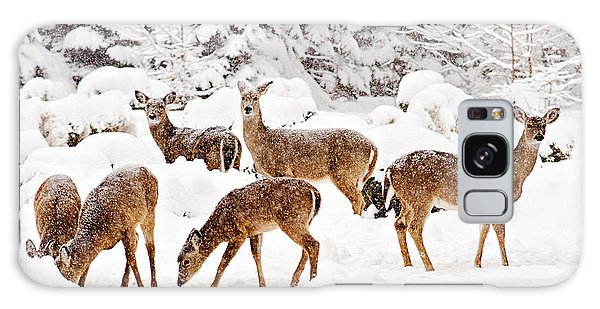 Galaxy Case featuring the photograph Deer In The Snow 2 by Angel Cher