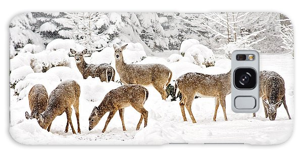 Galaxy Case featuring the photograph Deer In The Snow by Angel Cher