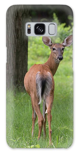 Deer Looking Back Galaxy Case