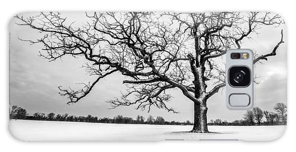 Delaware Park Winter Oak - Square Galaxy Case by Chris Bordeleau