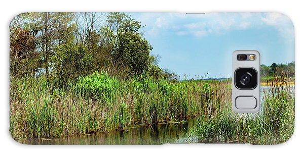 Delaware Wetlands Galaxy Case