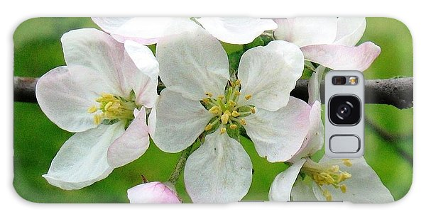 Delicate Apple Blossoms Galaxy Case
