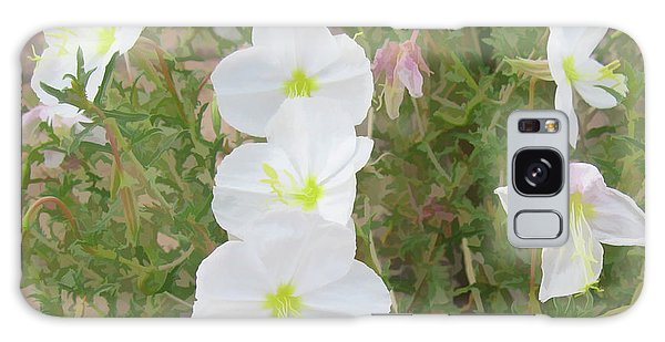 Delicate Desert Bloom - Death Valley Galaxy Case