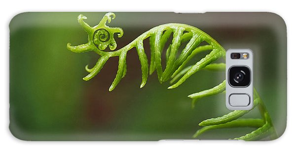 Delicate Fern Frond Spiral Galaxy Case by Rona Black