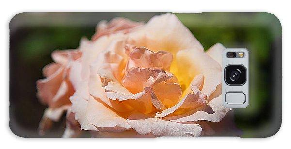 Delicate Rose Galaxy Case