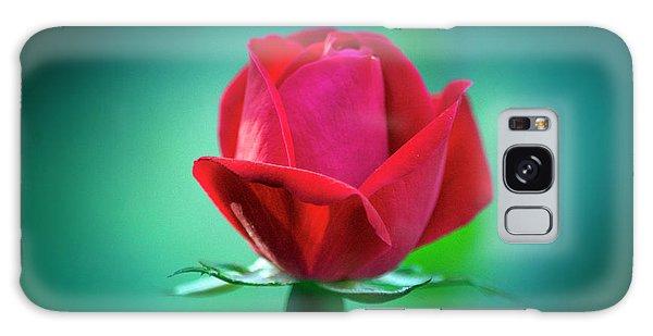 Delicate Rose Petals Galaxy Case