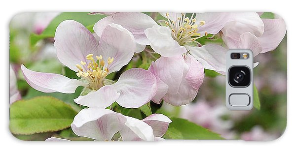 Delicate Soft Pink Apple Blossom Galaxy Case by Gill Billington