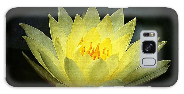 Delicate Water Lily Galaxy Case by Lori Seaman