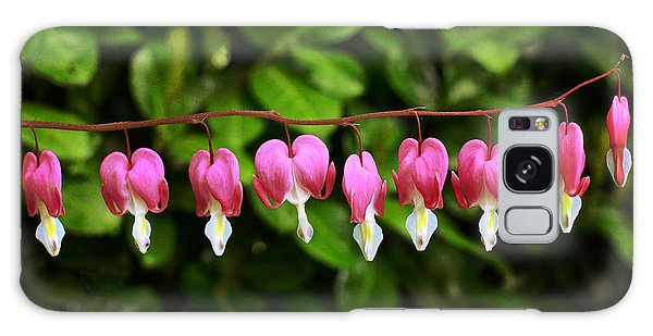 Delightful Bleeding Hearts Flowers Galaxy Case