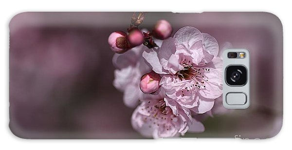 Delightful Pink Prunus Flowers Galaxy Case by Joy Watson