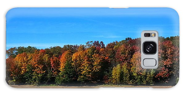 Delta Lake State Park Foliage Galaxy Case by Diane E Berry