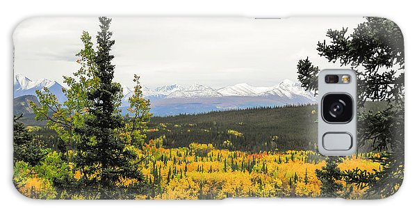 Denali National Park Landscape Galaxy Case