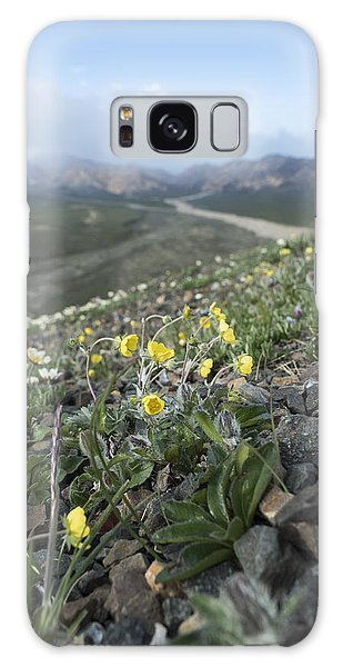 Denali Wildflowers Galaxy Case
