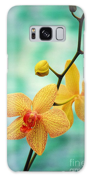 Blossoms Galaxy Case - Dendrobium by Allan Seiden - Printscapes