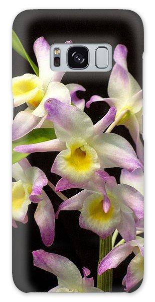 Dendrobium Orchid Galaxy Case