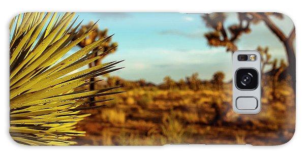 Desert Fan Galaxy Case