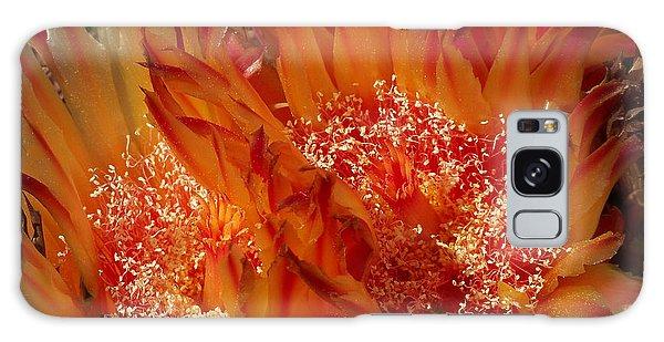 Desert Fire Galaxy Case by Kathy McClure