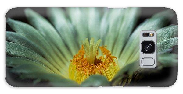 Desert Flower Galaxy Case