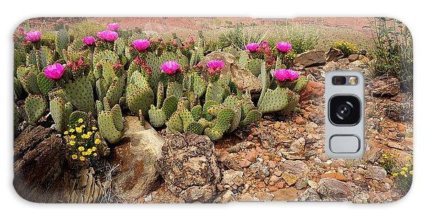Desert Cactus In Bloom Galaxy Case