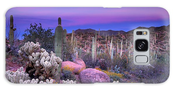 Cacti Galaxy Case - Desert Garden by Eric Foltz
