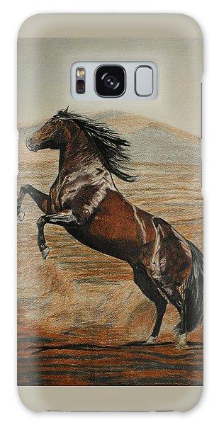 Desert Horse Galaxy Case by Melita Safran