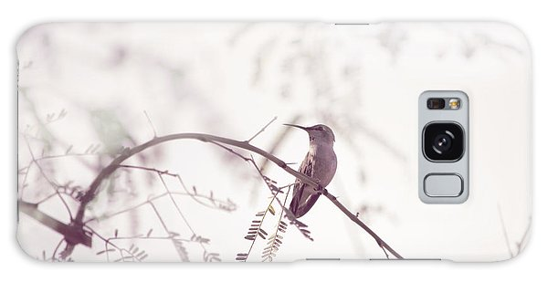 Desert Hummingbird II Galaxy Case