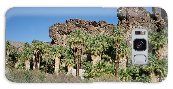 Galaxy Case featuring the photograph Desert Oasis V by Frank DiMarco