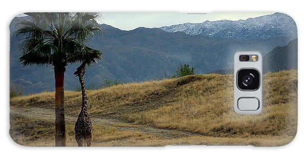 Desert Palm Giraffe 001 Galaxy Case by Guy Hoffman