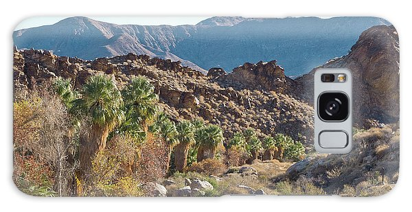 Galaxy Case featuring the photograph Desert Palms by Frank DiMarco