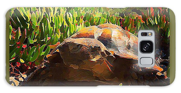 Galaxy Case - Desert Tortoise by Raven Hannah