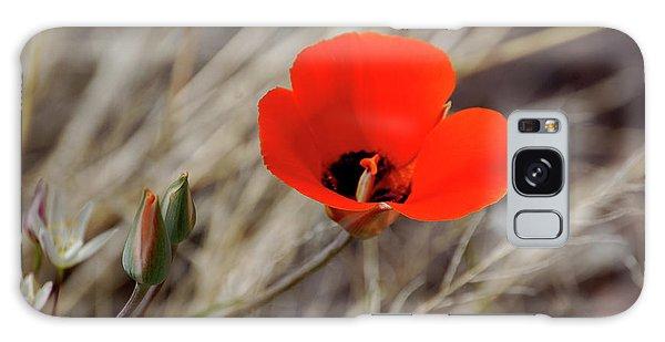 Desert Wildflower Galaxy Case