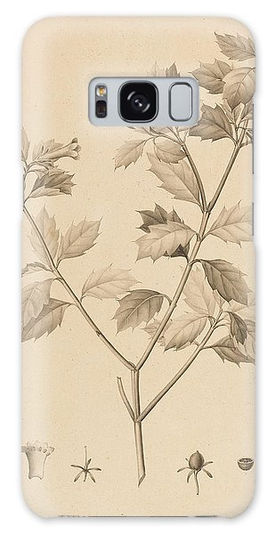 Plants Galaxy Case - Desfonainia Spinosa by Pierre Joseph Redoute