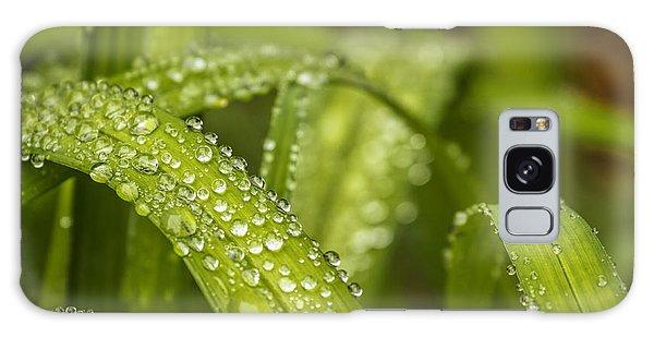 Dew Drops Galaxy Case