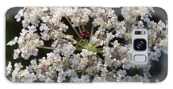 Dew On Queen Annes Lace Galaxy Case