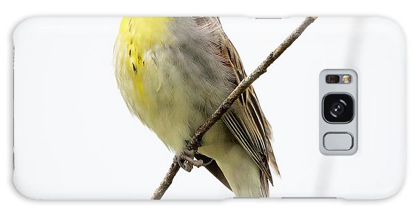 Dickcissel  Galaxy Case
