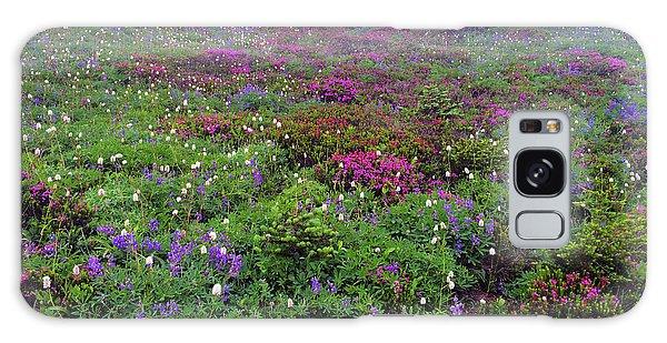 Dickerman Floral Meadow Galaxy Case