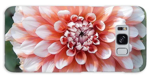 Dahlia Flower- Soft Pink Tones Galaxy Case