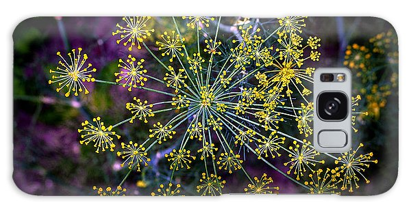 Dill Going To Seed Galaxy Case