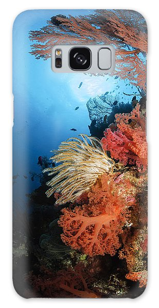Sea Lily Galaxy Case - Diver Swims By A Soft Coral Reef by Todd Winner