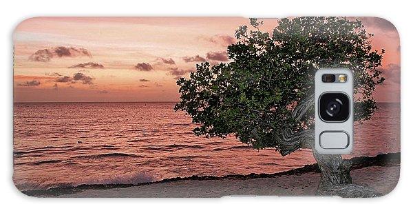 Divi Divi Aruba Galaxy Case by DJ Florek